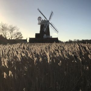 Cley windmill and reeds